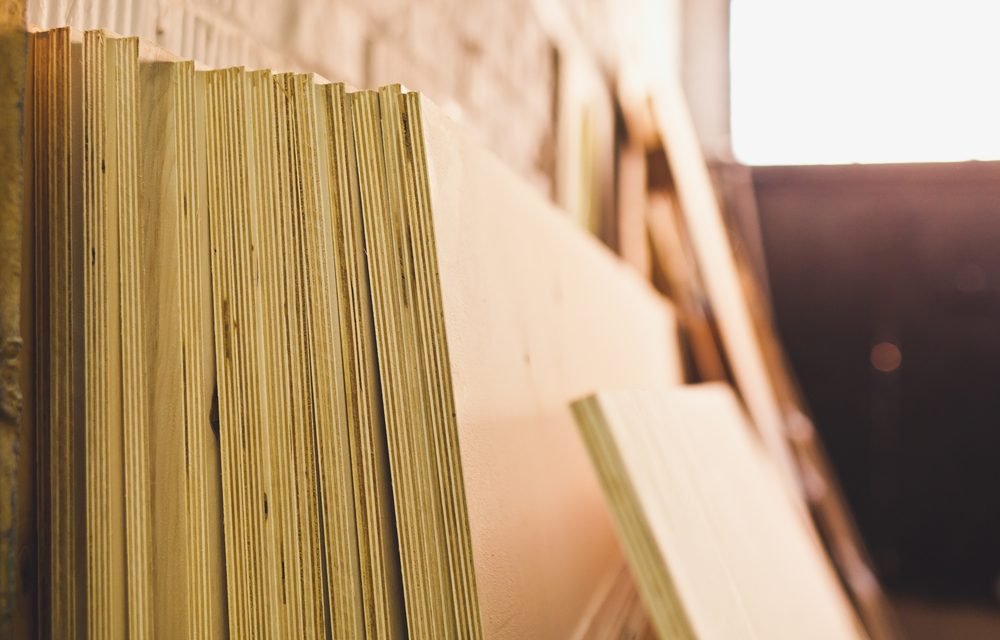 Plywood – would know, should know, could know