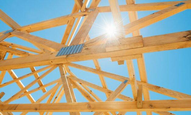 Timber v Steel